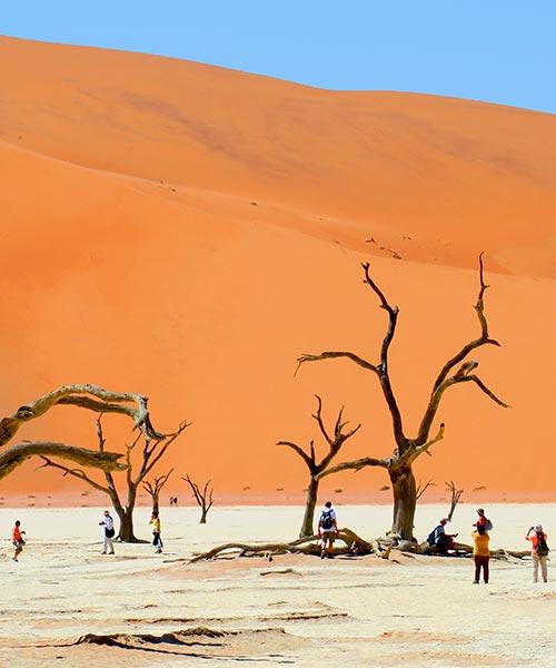 Namibia list banner