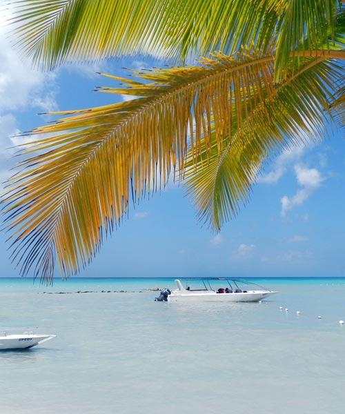Caribbean list banner