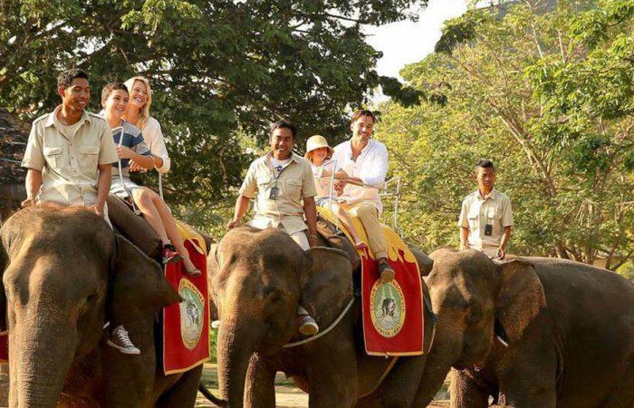 Bali Family Tour Banner