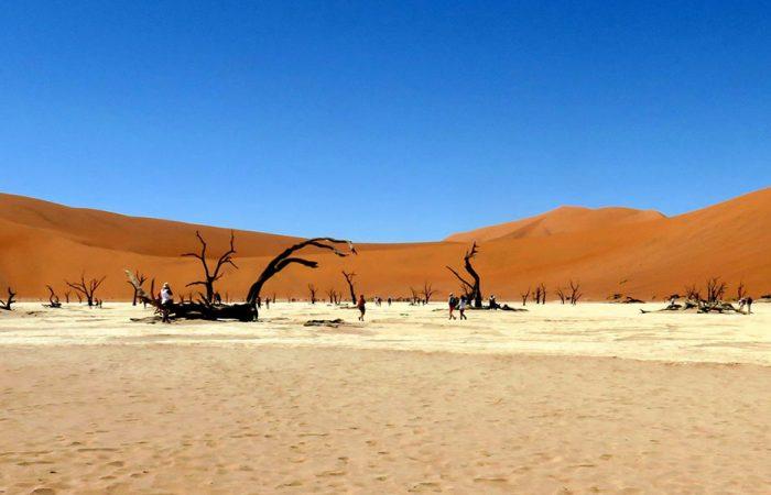 Namibia Namib Desert banner